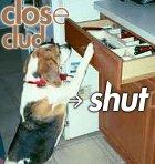 Clud-shut