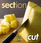 Sect-cut